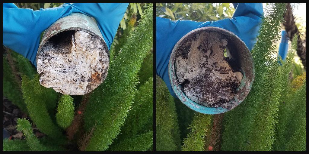 mauvaise odeur dans canalisations de fosse
